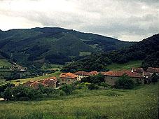 armanio