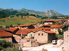 caloca1